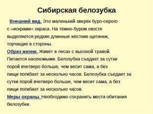 Сибирская белозубка Внешний вид.Это маленький зверёк буро-серого с «искрами»