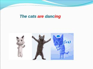 The cats are dancing