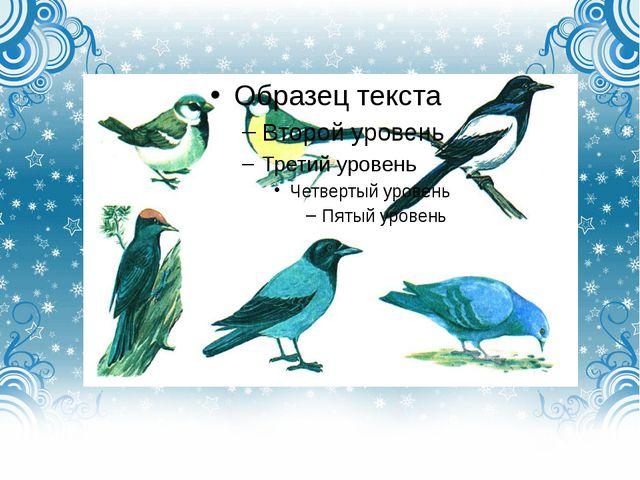 Различаемся мы цветом, встретишь нас зимой и летом. Если крыльями взмахнём,...