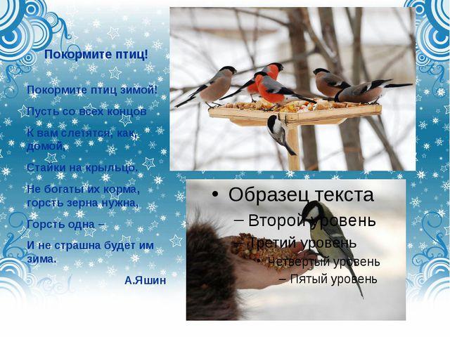 Покормите птиц! Покормите птиц зимой! Пусть со всех концов К вам слетятся, ка...
