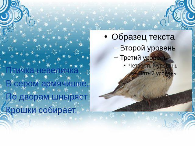 Птичка невеличка В сером армячишке, По дворам шныряет Крошки собирает.