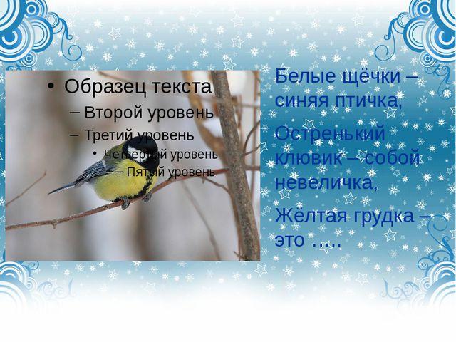 Белые щёчки – синяя птичка, Остренький клювик – собой невеличка, Жёлтая груд...