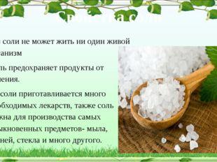 Свойства соли Без соли не может жить ни один живой организм Соль предохраняе