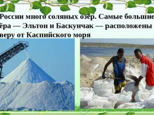 В России много соляных озёр. Самые большие озёра — Эльтон и Баскунчак — расп
