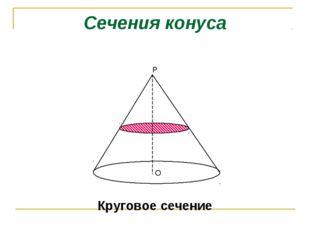 Сечения конуса Круговое сечение Р O