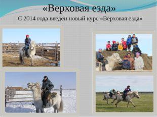 «Верховая езда» С 2014 года введен новый курс «Верховая езда»