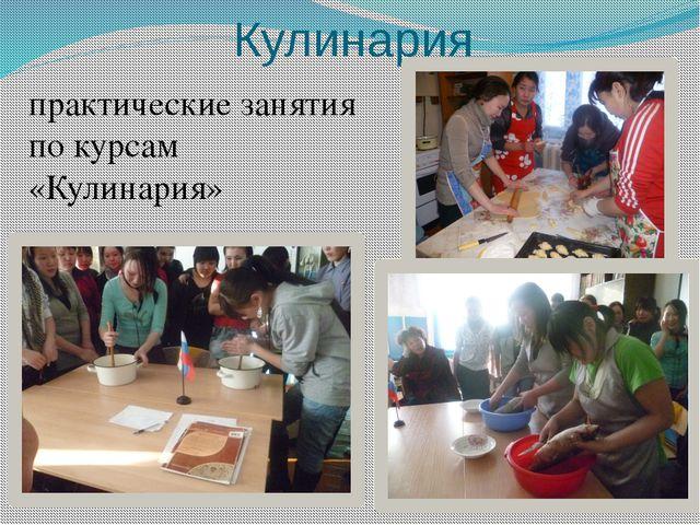Кулинария практические занятия по курсам «Кулинария»