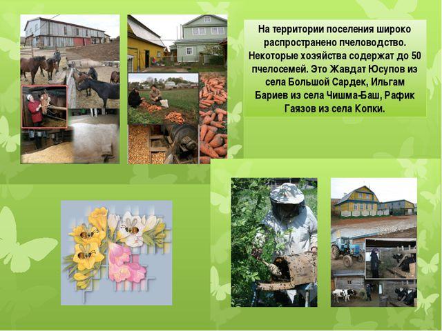 На территории поселения широко распространено пчеловодство. Некоторые хозяйст...