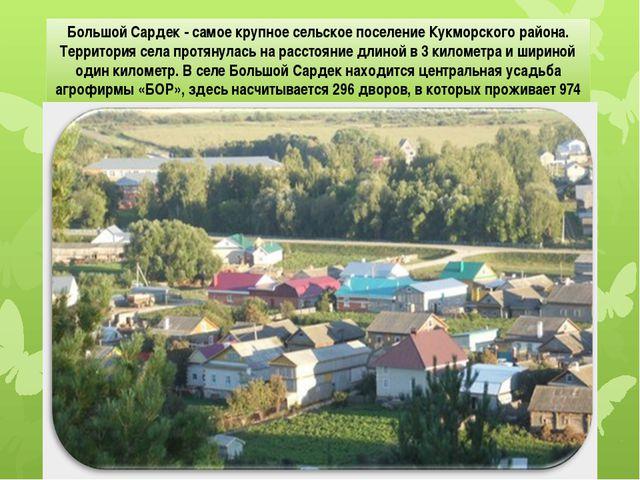 Большой Сардек - самое крупное сельское поселение Кукморского района. Террит...