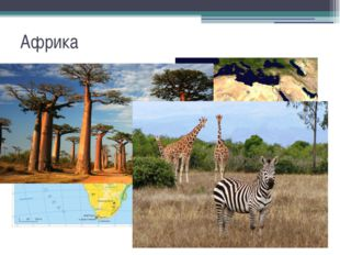 Африка
