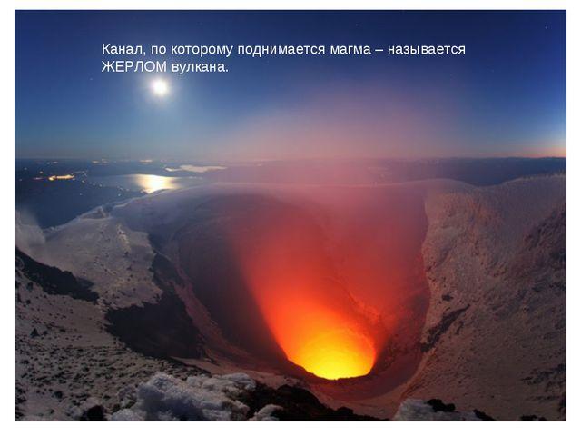 Канал, по которому поднимается магма – называется ЖЕРЛОМ вулкана.
