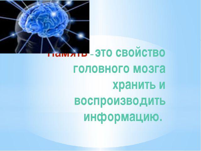 Память – это свойство головного мозга хранить и воспроизводить информацию.