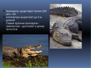 Крокодилы существуют более 200 млн. лет. Аллигаторы вырастают до 6 м. длиной.