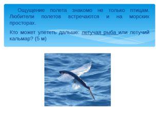 Ощущение полета знакомо не только птицам. Любители полетов встречаются и на