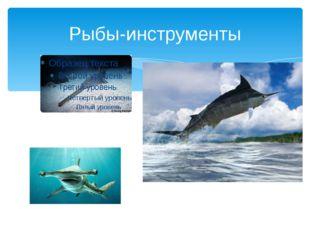 Рыбы-инструменты