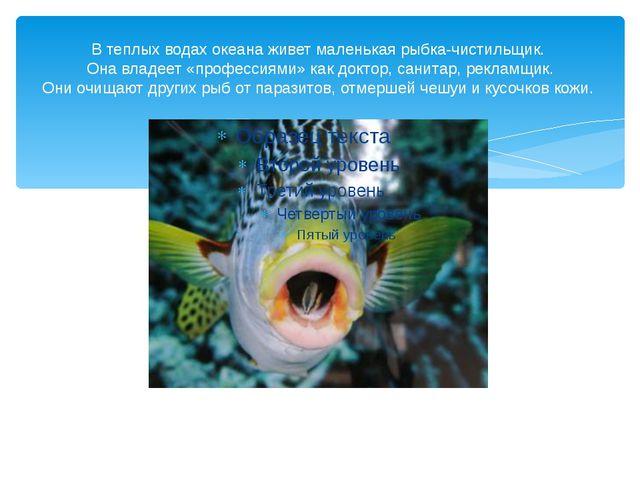 В теплых водах океана живет маленькая рыбка-чистильщик. Она владеет «професси...