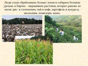 Люди стали обрабатывать больше земли и собирать большие урожаи, в Европе – вы