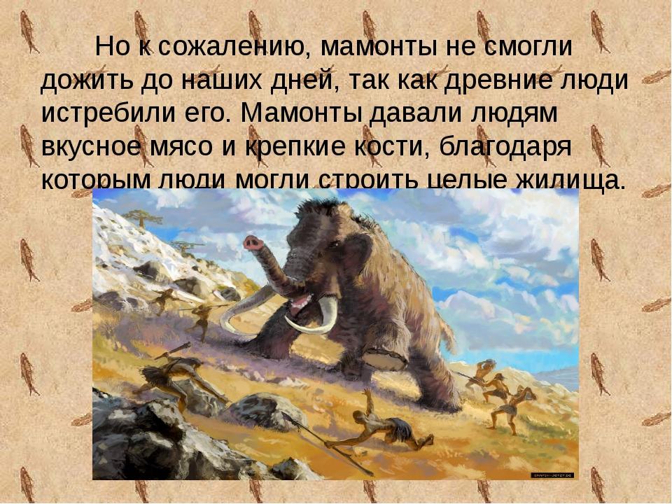 Но к сожалению, мамонты не смогли дожить до наших дней, так как древние люди...