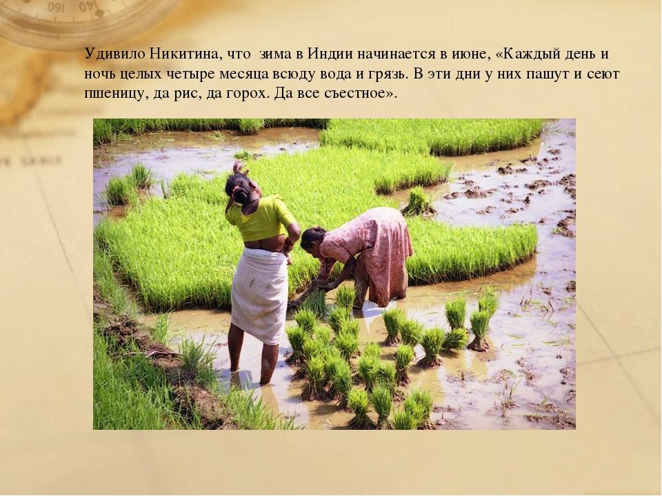Удивило Никитина, что зима в Индии начинается в июне, «Каждый день и ночь цел...