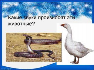 Какие звуки произносят эти животные?