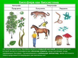 Биосфера как биосистема Как любая экосистема, биосфера является открытой сист