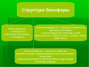 Структура биосферы Живое вещество — совокупность всех живых организмов, т. е