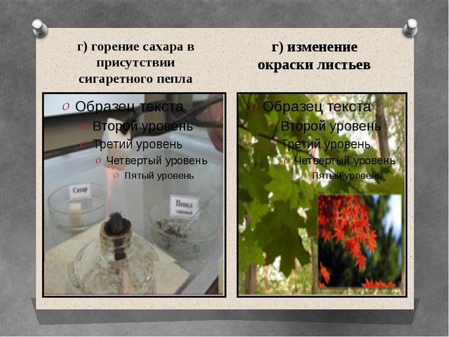 г) горение сахара в присутствии сигаретного пепла г) изменение окраски листьев