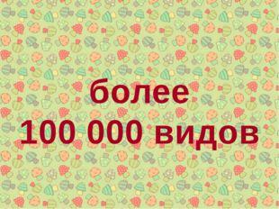 более 100 000 видов