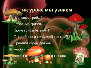 на уроке мы узнаем Что такое грибы? Строение грибов Какие грибы бывают? Съед