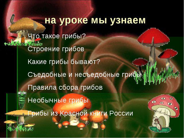 на уроке мы узнаем Что такое грибы? Строение грибов Какие грибы бывают? Съед...