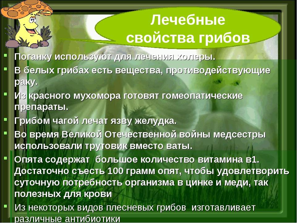 Поганку используют для лечения холеры. В белых грибах есть вещества, противод...