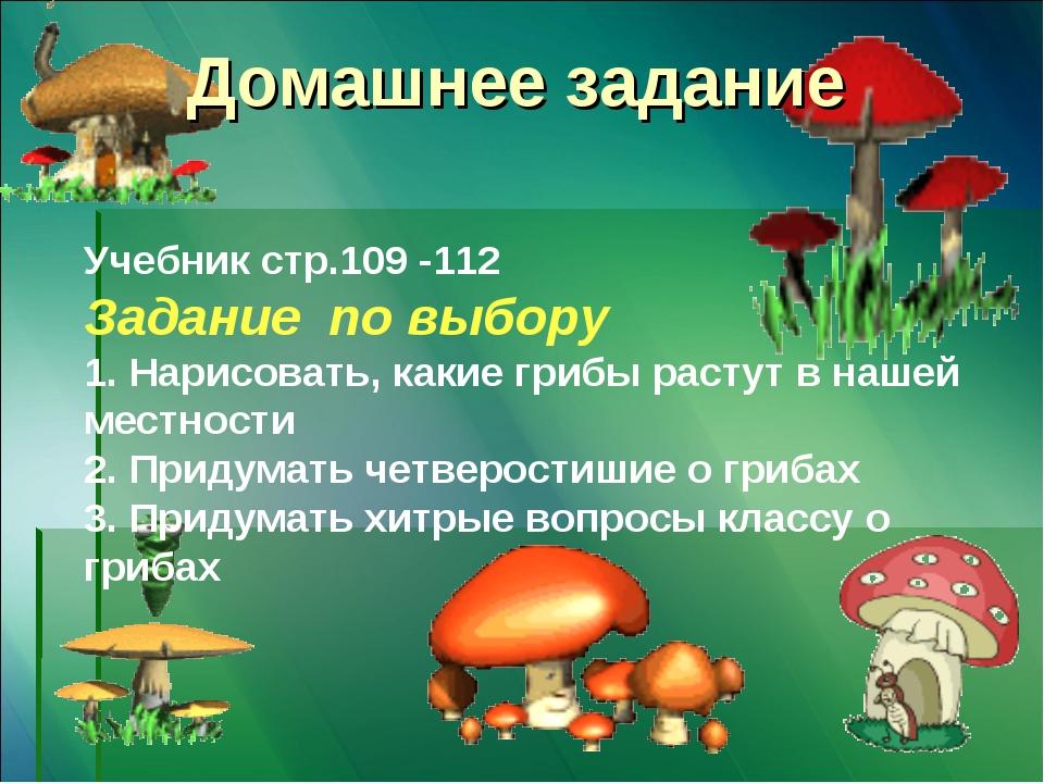 Домашнее задание Учебник стр.109 -112 Задание по выбору 1. Нарисовать, какие...