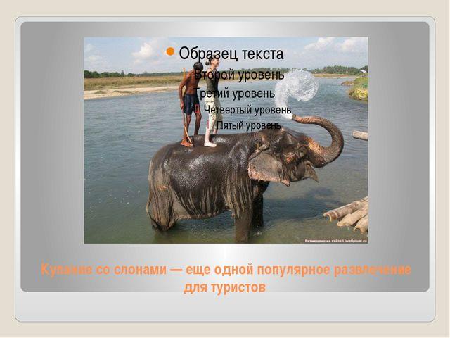 Купание со слонами — еще одной популярное развлечение для туристов