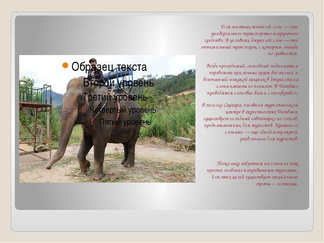Для местных жителей слон — это универсальное транспортно-погрузочное средств...