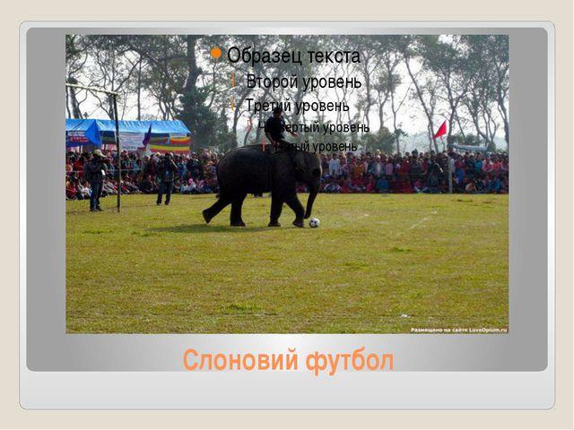 Слоновий футбол