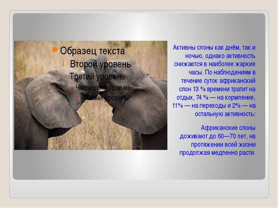 Активны слоны как днём, так и ночью, однако активность снижается в наиболее...
