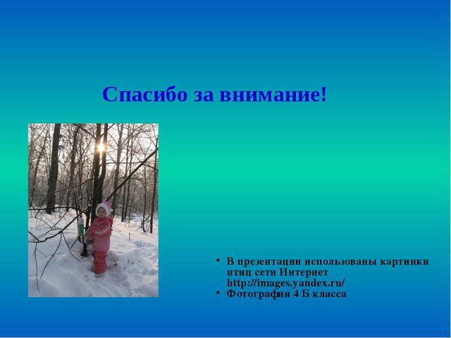 Спасибо за внимание! В презентации использованы картинки птиц сети Интернет h...