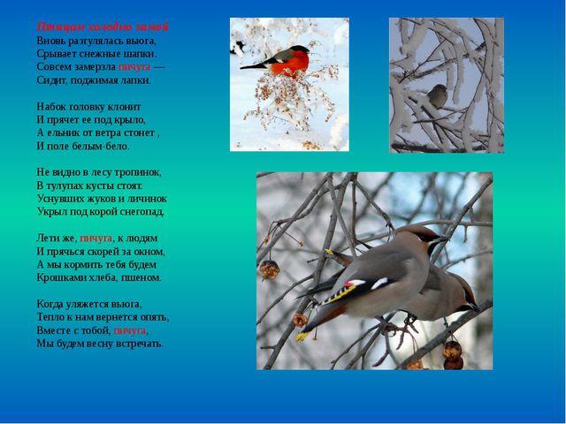 Птицам холодно зимой Вновь разгулялась вьюга, Срывает снежные шапки. Совсем з...