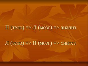 П (тело) => Л (мозг) => анализ Л (тело) => П (мозг) => синтез