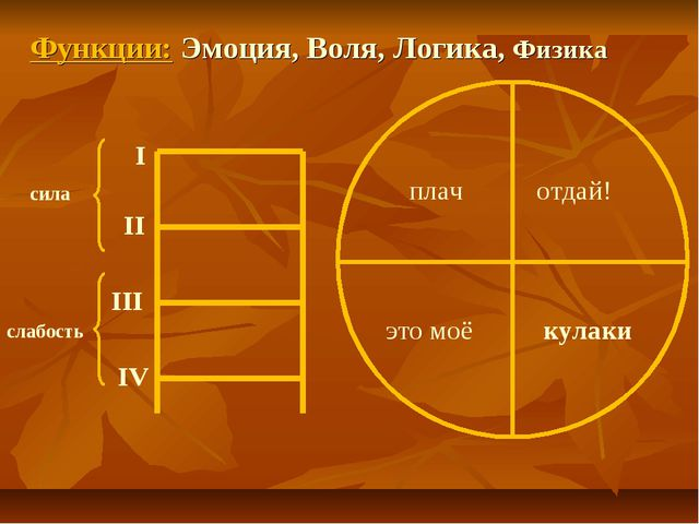 I II III IV сила слабость Функции: Эмоция, Воля, Логика, Физика