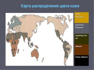 Карта распределения цвета кожи очень бледный довольно бледный промежуточный т