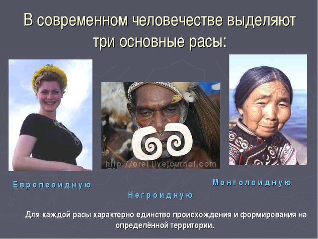 В современном человечестве выделяют три основные расы: Н е г р о и д н у ю Е...