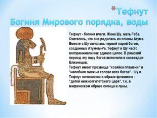 Тефнут - богиня влаги. Жена Шу, мать Геба. Считалось, что она родилась из слю