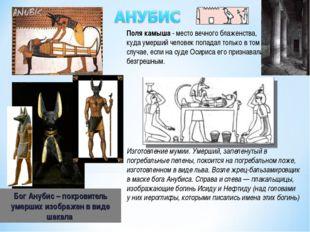 Бог Анубис – покровитель умерших изображен в виде шакала Изготовление мумии.