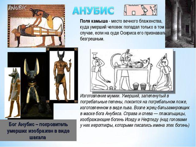 Бог Анубис – покровитель умерших изображен в виде шакала Изготовление мумии....