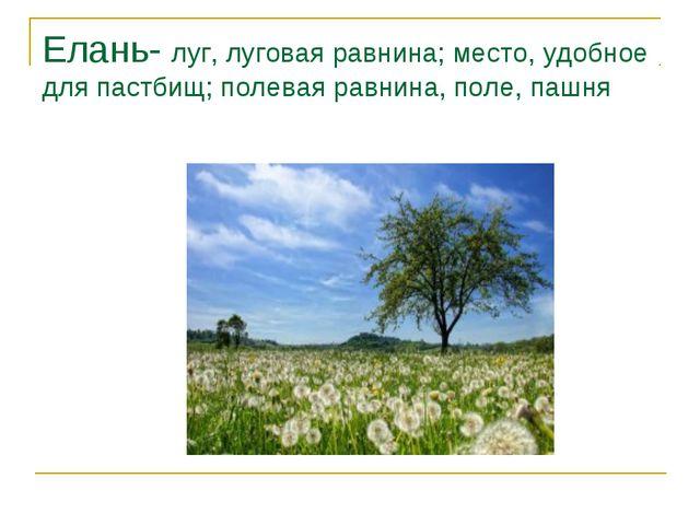Елань- луг, луговая равнина; место, удобное для пастбищ; полевая равнина, пол...