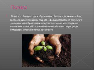 Почва – особое природное образование, обладающие рядом свойств, присущих жив