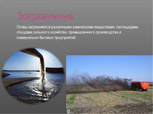 Почвы загрязняются различными химическими веществами, пестицидами, отходами с