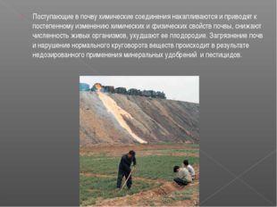 Поступающие в почву химические соединения накапливаются и приводят к постепен