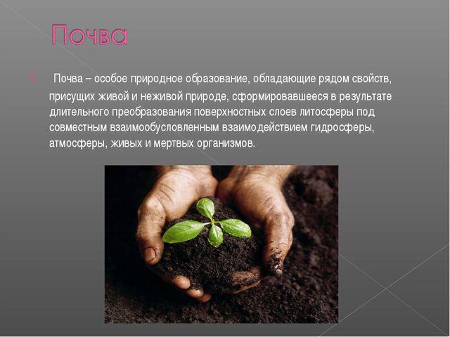Почва – особое природное образование, обладающие рядом свойств, присущих жив...